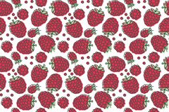 Raspberry seamless pattern. Hand drawn fresh berry. Vector sketch background. Doodle wallpaper. Red and green print stock illustration