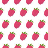 Raspberry seamless pattern Stock Images