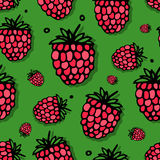 Raspberry seamless pattern for your design Royalty Free Stock Photos