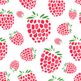 Raspberry seamless pattern for your design Stock Photo