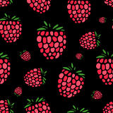 Raspberry seamless pattern for your design Royalty Free Stock Image