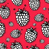 Raspberry seamless pattern for your design Stock Images