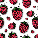 Raspberry seamless pattern for your design Royalty Free Stock Images