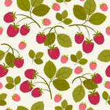 Raspberry seamless wallpaper Royalty Free Stock Photography