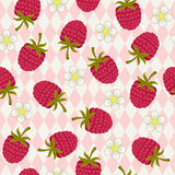 Raspberry seamless wallpaper Stock Image