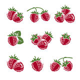 Raspberry set. Vector Stock Images