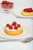 Raspberry shortcake Royalty Free Stock Photography