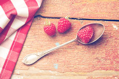 Raspberry on silver spoon Stock Images
