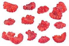 Raspberry slice set Stock Image