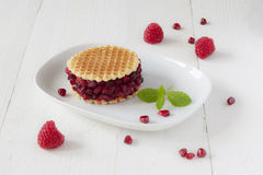 Raspberry Sorbet Dessert. A raspberry sorbet waffle ice cream decorated with pomegranate and fresh mint on a white dish Stock Photography