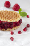 Raspberry Sorbet Ice Cream Waffle. A close-up of a raspberry sorbet waffle ice cream decorated with pomegranate, mint leaves and fresh raspberries Stock Images