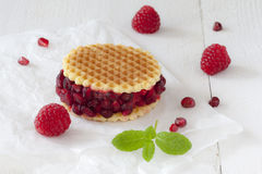 Raspberry Sorbet Waffle. A raspberry sorbet waffle ice cream dessert decorated with pomegranate seeds and fresh mint leaves on white paper Stock Photo