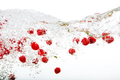 Raspberry Splash. Raspberries floating in water with bubbles and waves Stock Photos