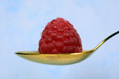 Raspberry on the spoon Stock Images