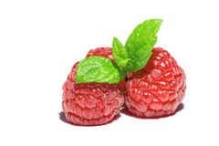 Raspberry with sprig of mint leaves on top macro close-up isolated on white Stock Photography