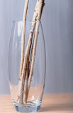 Raspberry stems in a glass vase. The raspberry stems in a glass vase on the table for the gray-blue background Stock Photos