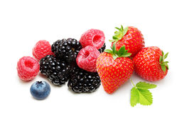 Raspberry, Strawberry and Blueberry Isolated. Raspberry, Strawberry, Blueberry, Blackberry  Isolated on White Background Royalty Free Stock Photo
