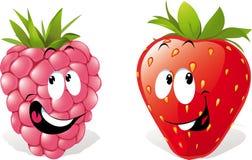 Raspberry, Strawberry Cartoons Royalty Free Stock Photos