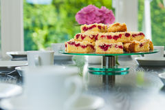 Raspberry Streusel Cake Royalty Free Stock Images