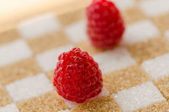 Raspberry on sugar Royalty Free Stock Photos