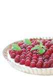 Raspberry tart. With a mint leaf and isolated on a white background, on a silver patter Stock Images