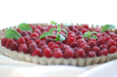 Raspberry tart Stock Images