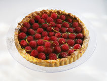 Raspberry tart Stock Image