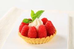 Raspberry tart Royalty Free Stock Photos