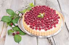 Raspberry Tart against wood Royalty Free Stock Photo
