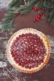 Raspberry tart Royalty Free Stock Photo