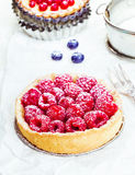 Raspberry tart dusted with sugar Stock Photography