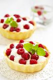 Raspberry tart. Fresh Raspberry Tart. See my other works in portfolio Royalty Free Stock Images