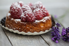 Raspberry Tarte Royalty Free Stock Photography