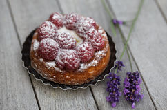 Raspberry Tarte. Small french Raspberry Tarte with icing sugar on wooden table Stock Photography