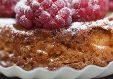 Raspberry Tarte Royalty Free Stock Photo