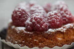 Raspberry Tarte Royalty Free Stock Photos