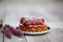 Raspberry Tarte. Small french Raspberry Tarte with icing sugar on wooden table Royalty Free Stock Image