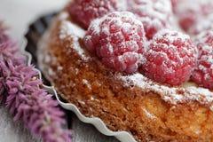 Raspberry Tarte Royalty Free Stock Photos