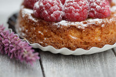 Raspberry Tarte stock image