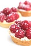 Raspberry tarts Stock Images