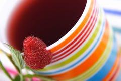 Raspberry tea. Cup of raspberry tea Royalty Free Stock Image