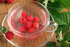 Raspberry tea Royalty Free Stock Photography
