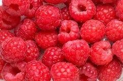 Raspberry texture background Royalty Free Stock Photos
