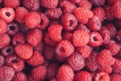 Raspberry texture. In film style Stock Photos