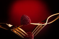 Raspberry on the top of two golden forks Royalty Free Stock Photography