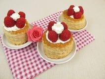 Raspberry torte Royalty Free Stock Photos