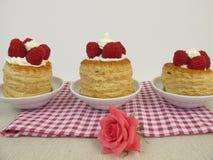 Raspberry torte Stock Photo