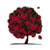 Raspberry tree, sketch for your design Stock Photos