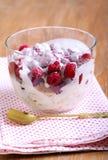 Raspberry trifle Royalty Free Stock Photos