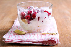 Raspberry trifle Royalty Free Stock Images